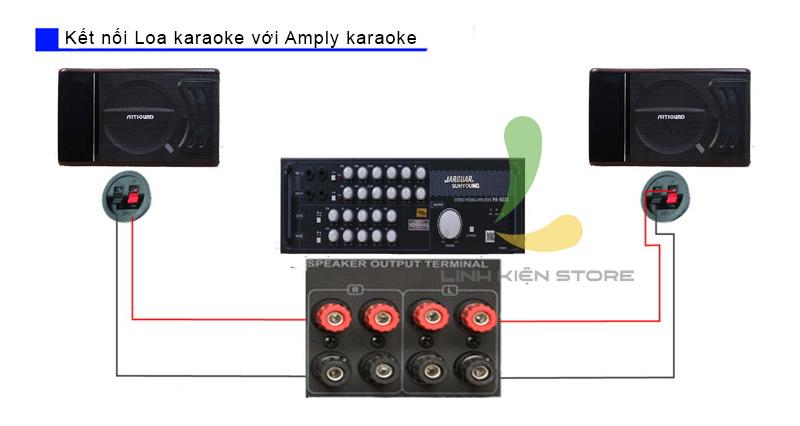 hướng dẫn lắp đặt dàn karaoke gia đình